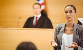 legal languge service provision